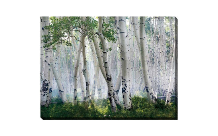 up in the clouds is a nice gallery wrapped canvas with brich trees and green parts.