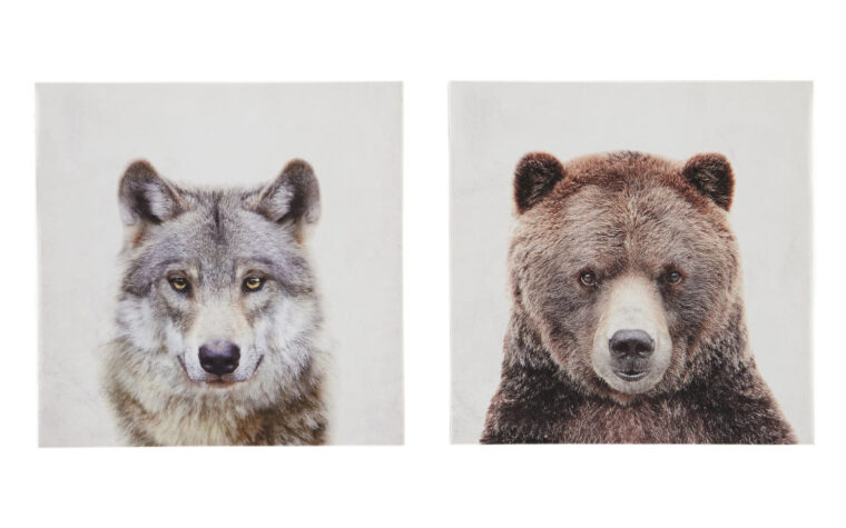 albert wall art is a wolf and a bear on square canvases