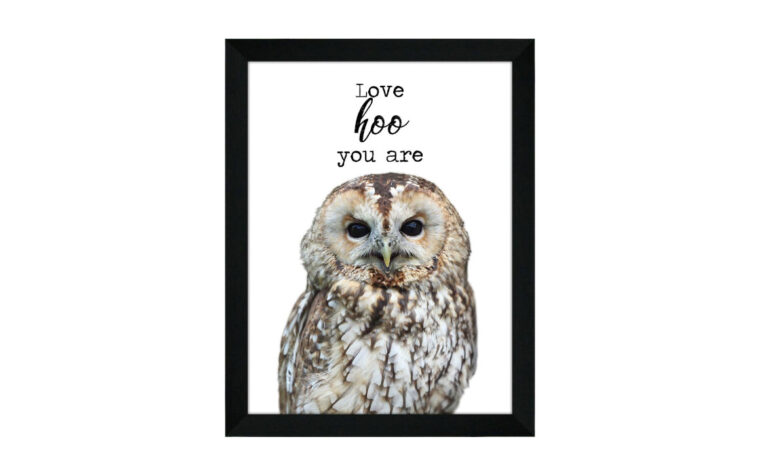owl is a framed piece of wall art featuring an owl with typography saying love hoo you are