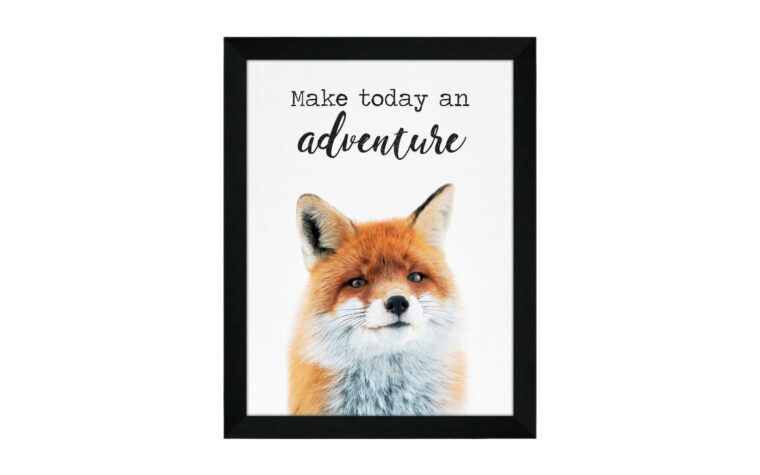 fox is a print of a fox with the sentiment make today an adventure surrounded by a black frame with glass