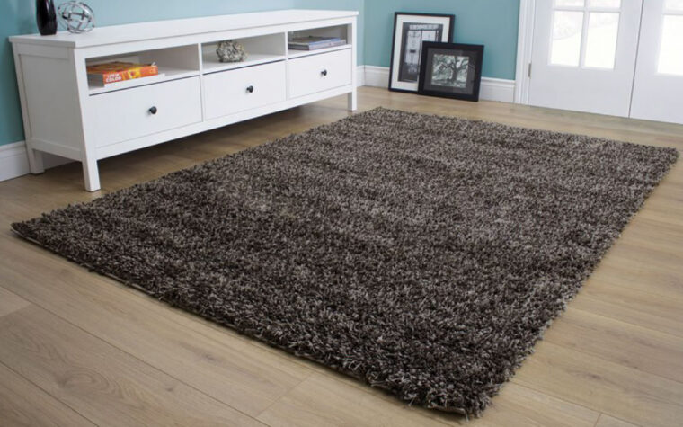 Opus Area Rug room