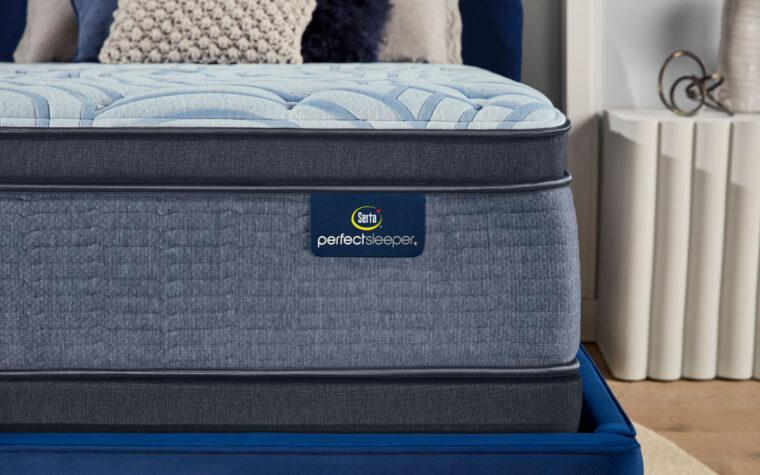 future perfect sleeper mattress by serta